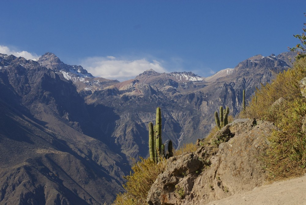 Custom Quote: Full Day Colca Canyon Hiking Tour