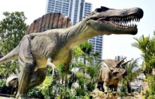 Admission To Bangkok Dinosaur Planet Theme Park