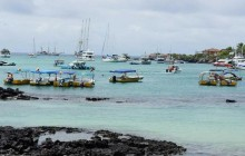 Galapagos Flash - 4**** Hotel - 4 Days