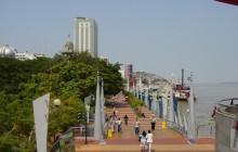 Transfer Guayaquil / Cuenca vía El Cajas