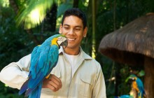 Bird Park Ticket and Transfers