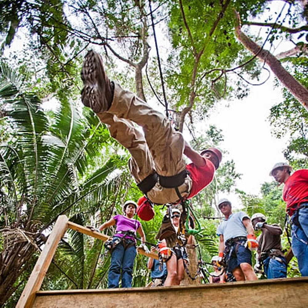 Ziplining - Daytime Flying