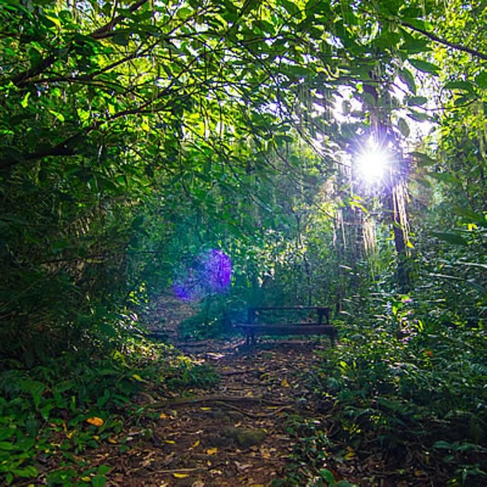 Bocawina Hike