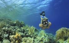 Maracajau Parrachos Reef - Snorkel Swim