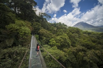 A picture of Rainforest & Cloud Forest Package