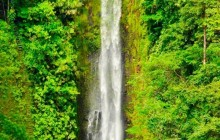 Rainforest & Cloud Forest Package