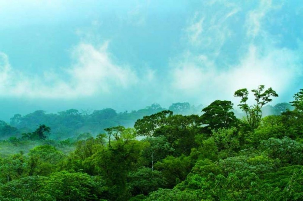 Arenal Volcano Package: 4 Nights