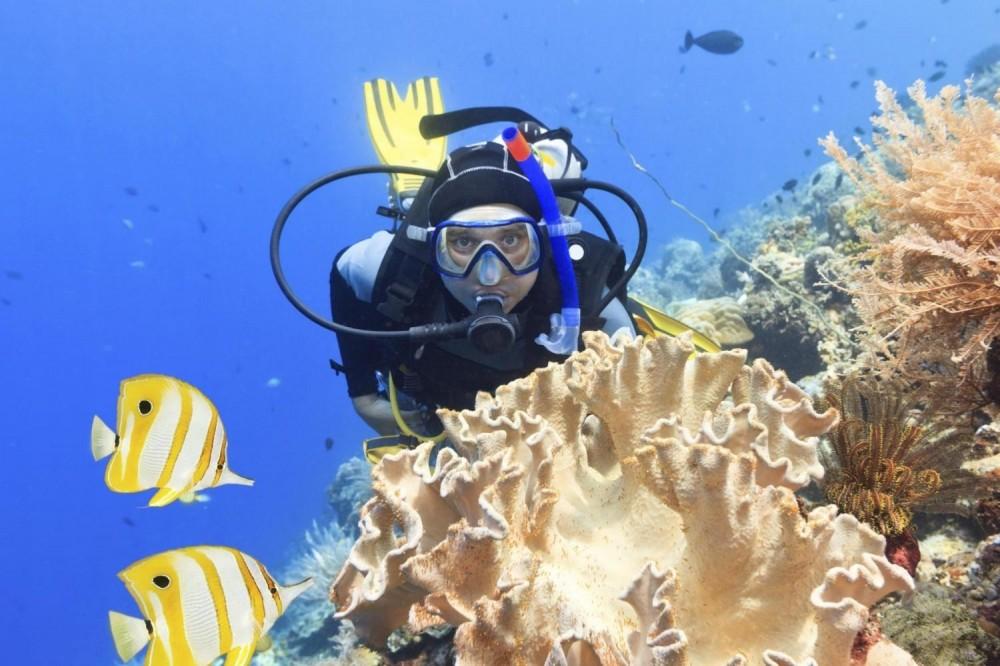 Paraty Bay Scuba Experience