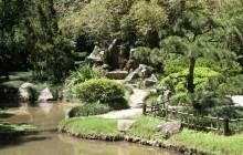 Rainforest Jeep Tour with Botanical Garden