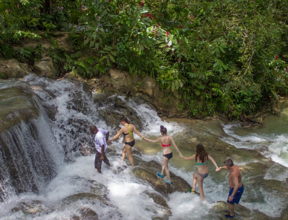 Dunn's River Falls & Fern Gully Adventure Tour from Runaway Bay