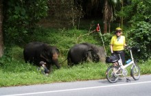 Experiences Chiang Mai bike, hike, raft, cook, canoe in Thailand