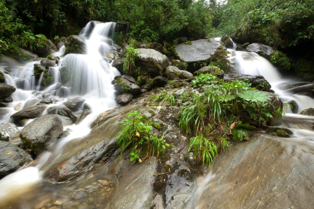 Waterfalls of Presidente Figueiredo