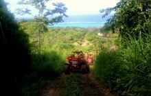 Dune Buggy Tour & Beach Escape
