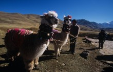 FD Tour Cusco / Puno By Bus With Lunch On The Route