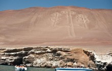 Full Day Tour Nazca Lines & Ballestas Islands