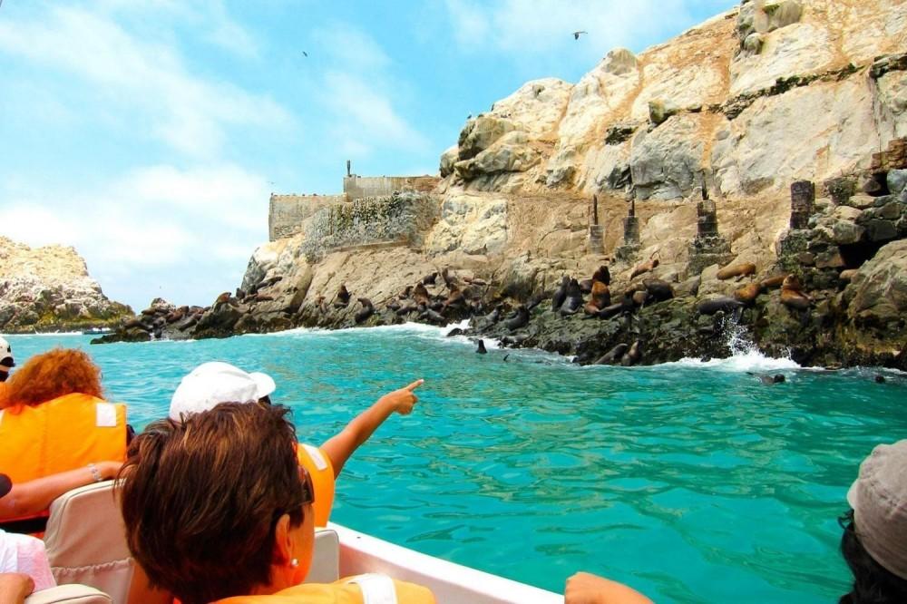 Lima Islands: Palomino, Cabinzas & San Lorenzo