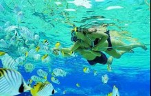 Discovery Bavaro Snorkeling Excursion from Punta Cana