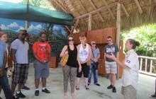 Monkey Land From La Romana