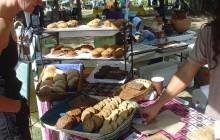San Jose del Cabo City & Organic Market Tour