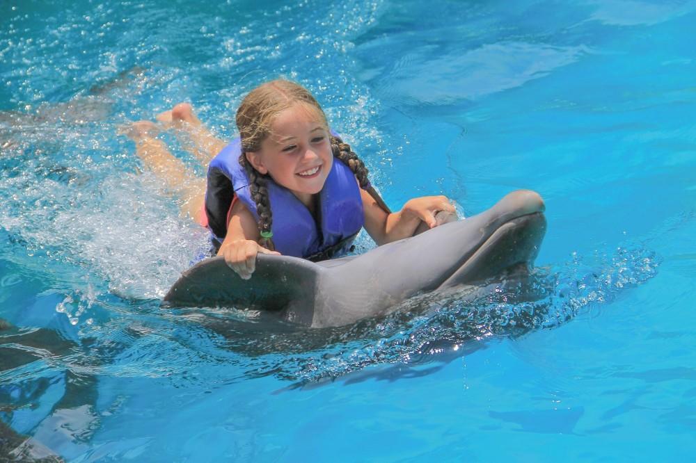 Dolphin Kids