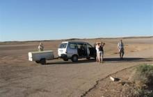 Kgalagadi Transfrontier Park 4 Days Tour
