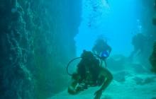 La Marietas Two tank Dive For Certified Divers
