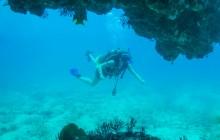 Las Caletas Two tank Dive For Certified Divers