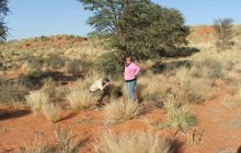 Kalahari Safaris-Desert Explorers