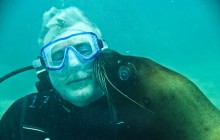 Las Caletas One tank Dive With Sea Lions