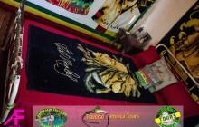 Bob Marley Nine Mile Plus Dunn's River Tour