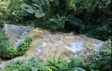 Ocho Rios Garden Tour |Fern Gully, Konoko Falls And Park
