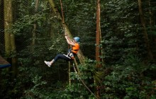 Rainforest Adventures: Adrenaline Zip Line