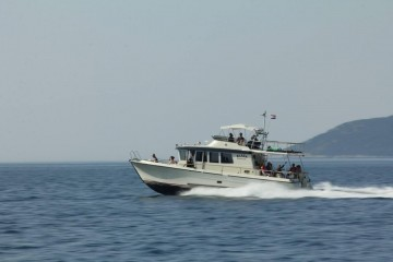 A picture of Croatia Tailor Made Fishing Holiday Package