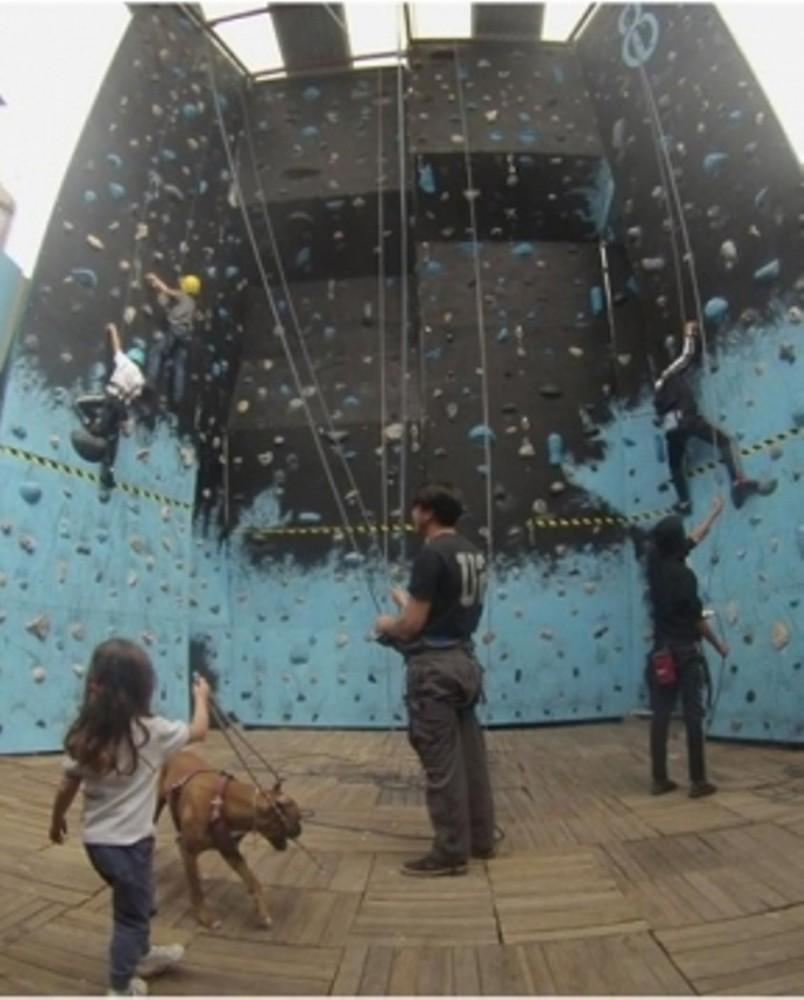 In wall Climbing