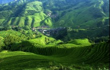 Longsheng Rice Terraces & Long Hair Minority Show