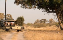 Okavango Delta Wildlife Safari