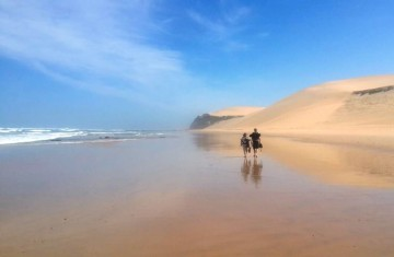 A picture of 3 Day Woody Cape Trail