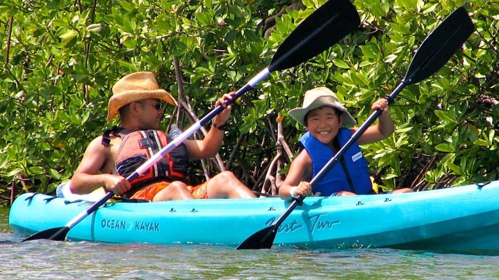 St Thomas - Mangrove Lagoon, Cas Cay Kayak, Hike & Snorkel 5 Hour