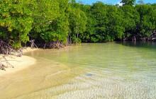 St Thomas - Mangrove Lagoon, Cas Cay Kayak, Hike & Snorkel 3 Hour