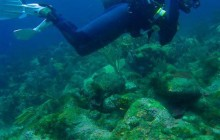 Upgrade PADI Scuba Diver To PADI Open Water Diver