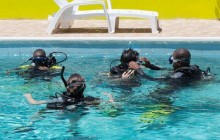 PADI Open Water Diver Referral