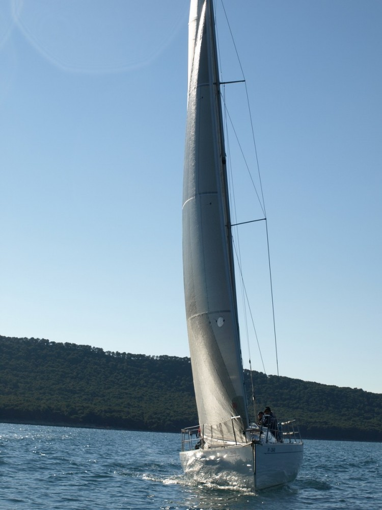 Half Day Sailing