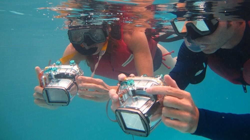 Henley Cay - Kayak & Snorkel Adventure
