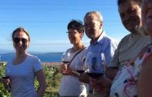 Hvar Island Wine Tour- The Evolution of Zinfandel