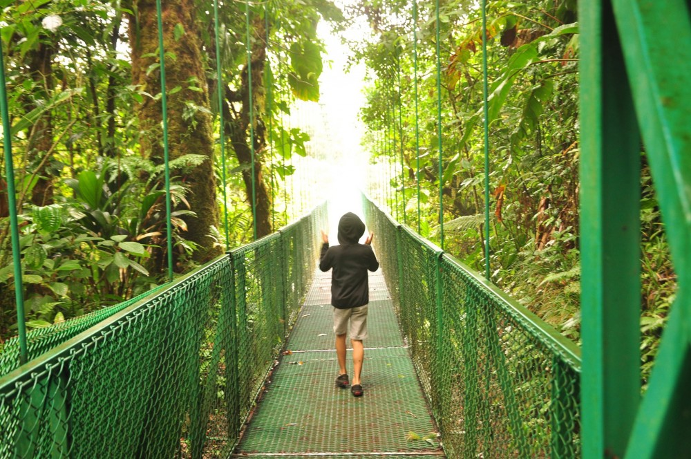 Guanacaste Day Tour: Monteverde Hanging Bridges + Gardens