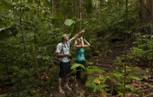 Rainforest Adventures: Bird Watching Tour