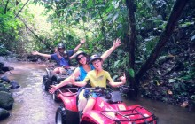 The La Guaria Bosque Finca/Rio (Farm/River) Tour