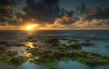 Circle Island Sunrise Private Photo Tour