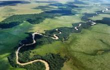 Iguazu Falls & Ibera Marshlands