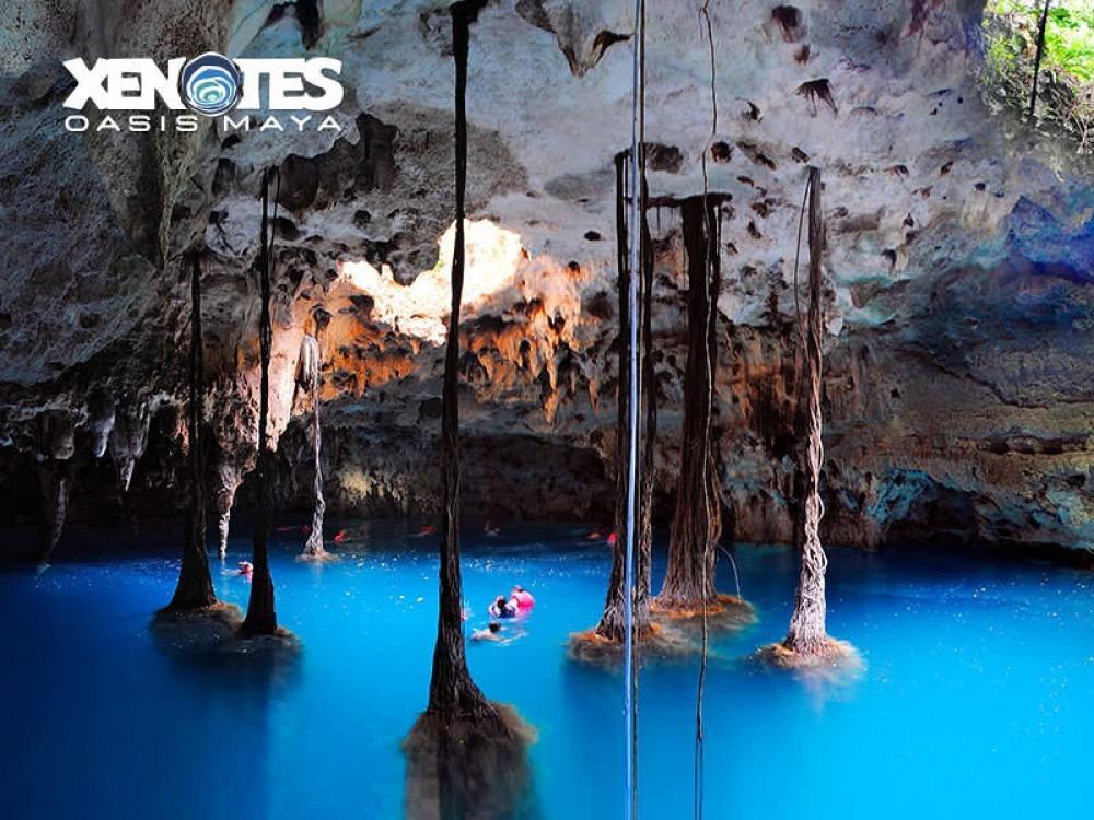 Xenotes Oasis Maya Tour